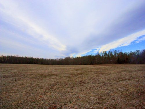 32.4 Perfect Hunting Acreage : Aylett : King William County : Virginia