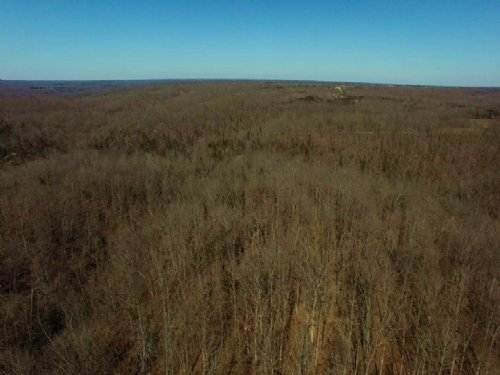 80 Acres : Mokane : Callaway County : Missouri