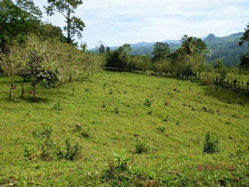 Mt. View 12.9 Ac. Ranch W/ Springs : Santa Teresita De Turrialba : Costa Rica