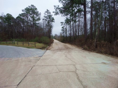 1 Acre Corner Tract In Hortense : Hortense : Brantley County : Georgia