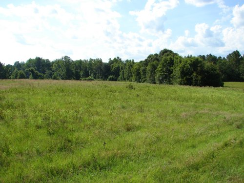 Crawford Community 43 Acres : Phenix City : Russell County : Alabama