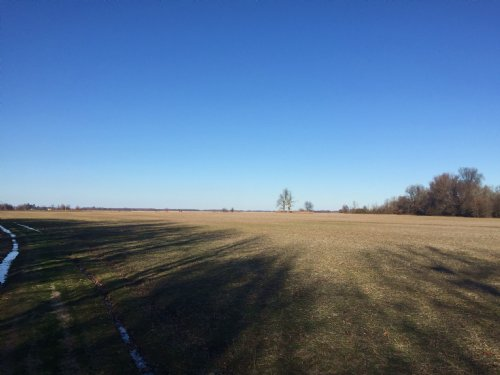 160+/- Acres Of Cropland And Timber : Tuckerman : Jackson County : Arkansas