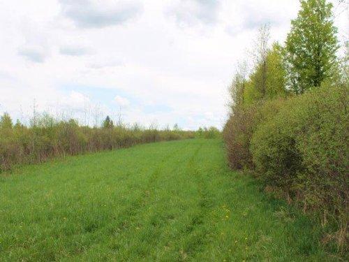 Farmland Build Your Home Farm : Root : Montgomery County : New York