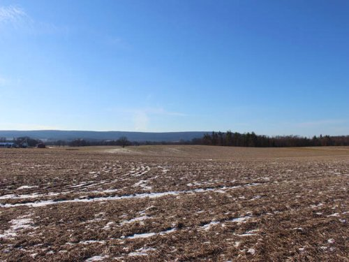 42+/- Acre Farm For Sale : Milton : Northumberland County : Pennsylvania