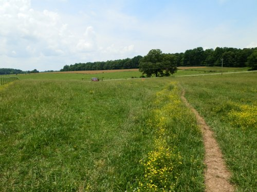 A3464 - 14.8 Acres Farm : Columbia : Adair County : Kentucky
