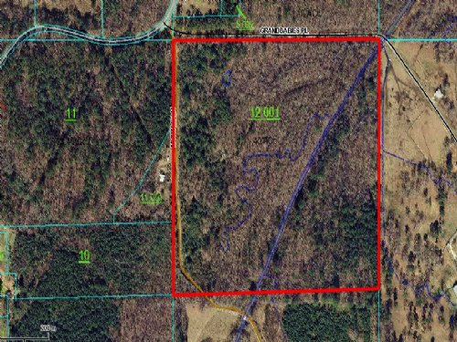 Flat 40 Acres On Creek : Odenville : St. Clair County : Alabama