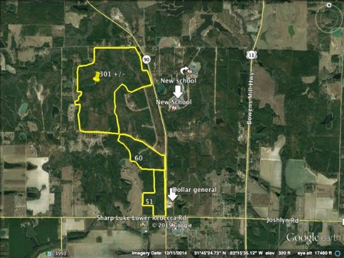 412 Acres Bank Owned - Investment : Fitzgerald : Ben Hill County : Georgia