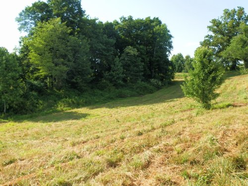 R3478 - 4 Acres : Russell Springs : Russell County : Kentucky