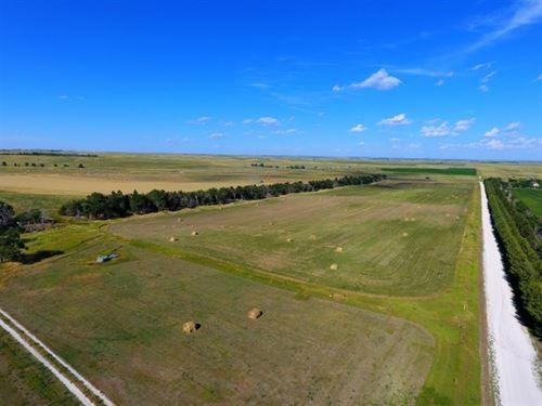 Dawes County Dryland & Pasture : Hay Springs : Dawes County : Nebraska