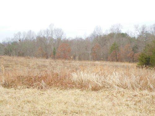 A3566 -  11.695 Acres : Columbia : Adair County : Kentucky