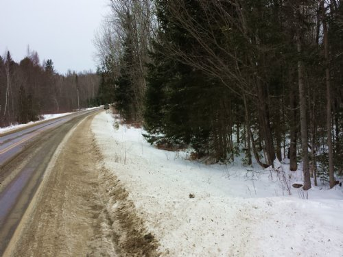 8 Acre Wood Lot : Hartland : Somerset County : Maine