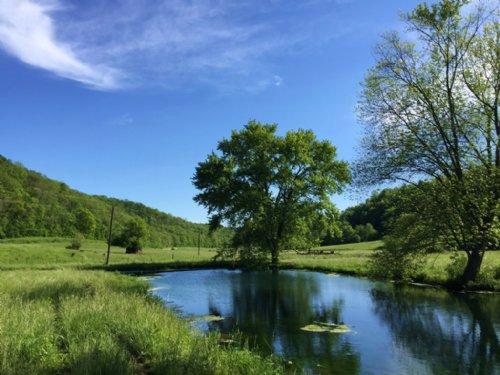 272 Acres Ag & Rec Land : Boscobel : Grant County : Wisconsin