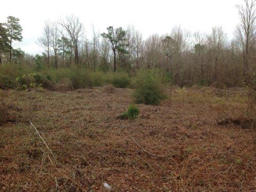 2.66 Acres : Sumter : South Carolina
