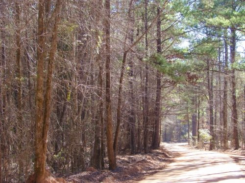 Convenient, Country Homesite : Eclectic : Elmore County : Alabama