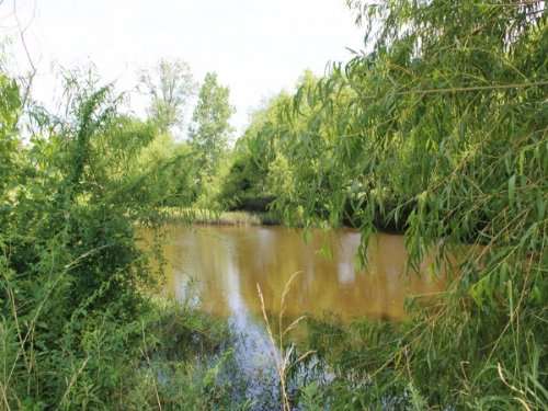 8.61 Acre Mccoy Creek. Terms $340/m : Clarksville : Red River County : Texas