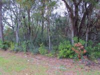 Nice Home Site 769643 : Chiefland : Levy County : Florida