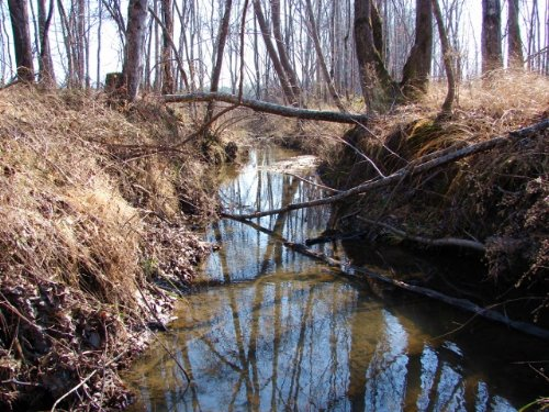Hissop Comm. Timber And Hunting : Rockford : Coosa County : Alabama