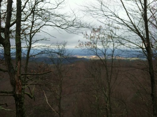 Timber Investment Opportunity : Sneedville : Hancock County : Tennessee