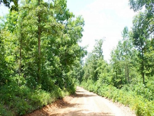 6.02 Acre Green Mountain Ranch. Ter : Winona : Shannon County : Missouri