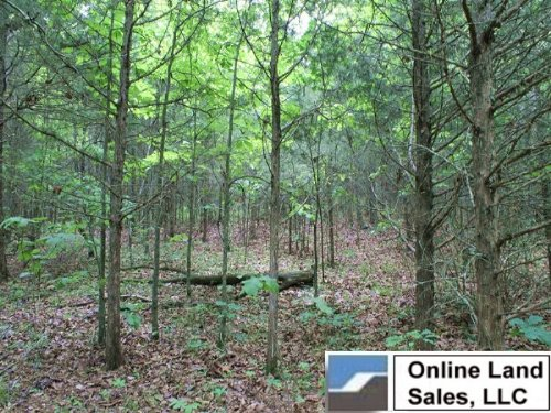 10.19 Acres Cedar Ridge Ranch. Term : Rolla : Phelps County : Missouri