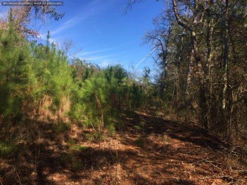 44± Acres : Madden : Leake County : Mississippi