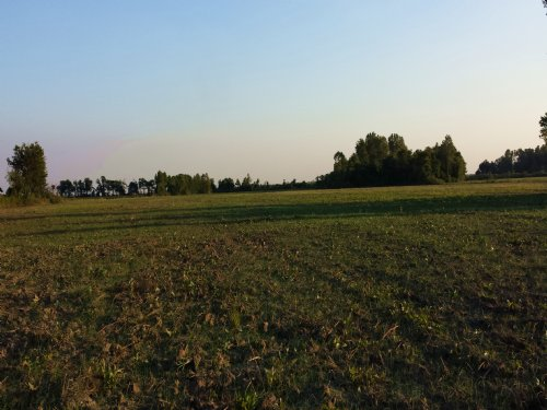 70 Dry Acres Priced To Sell : Jonesboro : Arkansas County : Arkansas