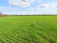 966 Acre Row Crop Farm : Paris : Lamar County : Texas