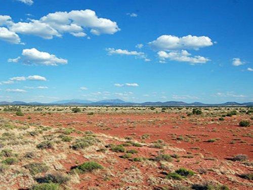 1.04 Acre Lot Near Williams : Williams : Coconino County : Arizona