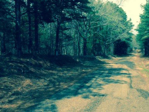 10 Ac Mini Farm & Home Sites : Utica : Copiah County : Mississippi