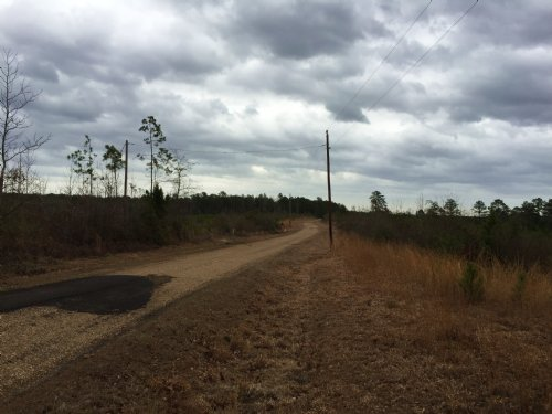 13 Acres In Wesson : Wesson : Copiah County : Mississippi