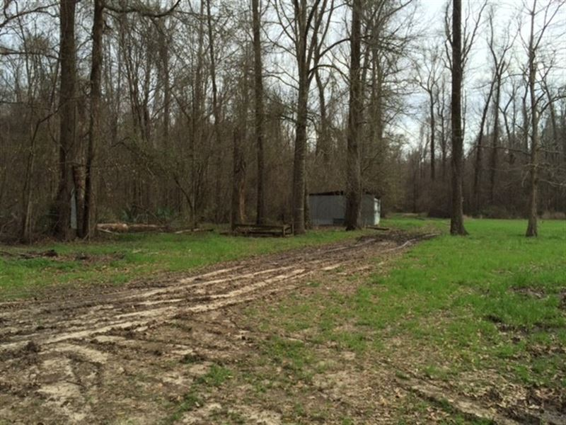 2.5 Ac - Hunting & Fishing Camp : Crowville : Madison Parish : Louisiana