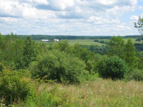 Farmland Near Ithaca Great Views : Hector : Schuyler County : New York