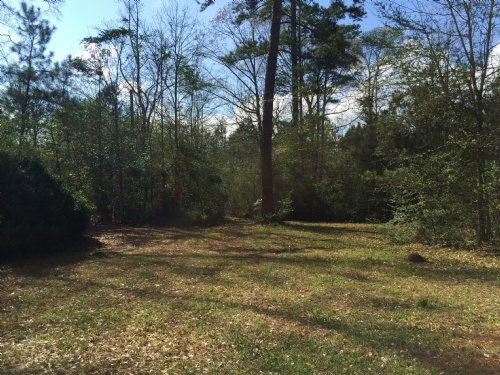 Multi Use Tract : Magnolia : Amite County : Mississippi