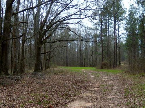 Sugar Creek Tree Farm-Reduced : Madison : Morgan County : Georgia
