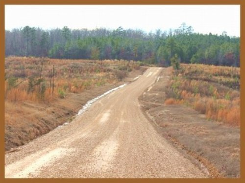148 Acres In Choctaw County, Missis : Weir : Choctaw County : Mississippi