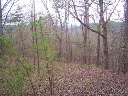 Residential : Waleska : Cherokee County : Georgia