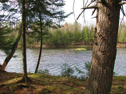 Waterfront Lot Adirondack Park : Forestport : Oneida County : New York