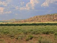 No Az Wilderness Ranch $193 Month : Saint Johns : Apache County : Arizona