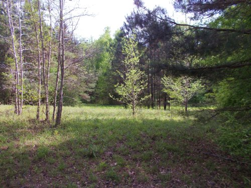 Beautiful Wetumpka Commercial Lot : Wetumpka : Elmore County : Alabama