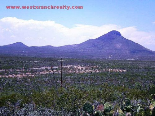 19.5 Acres In Brewster County, Texa : Study Butte : Brewster County : Texas