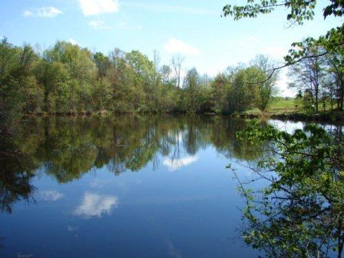 Stunning Property : Tuskegee : Macon County : Alabama