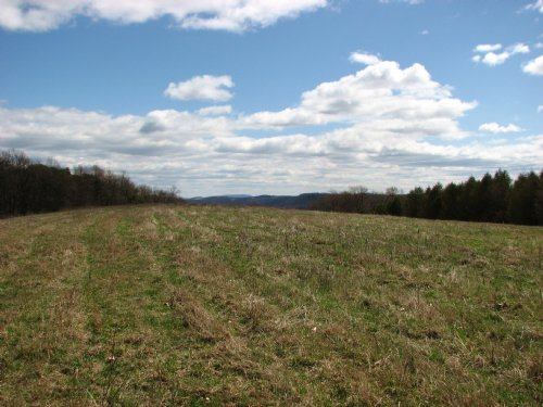 Price Reduced - 27 +/- Acres : Northumberland County : Pennsylvania