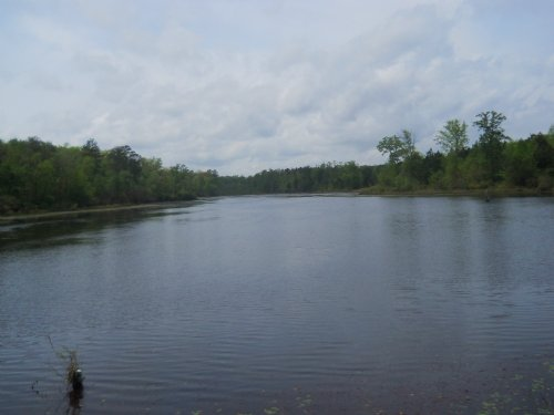 Big Hdw, Bucks, Bass And Ducks : Reynolds : Taylor County : Georgia
