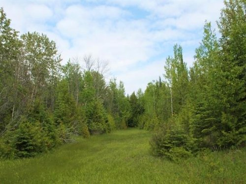 Lot 1 M-183, 1115795 : Garden : Delta County : Michigan