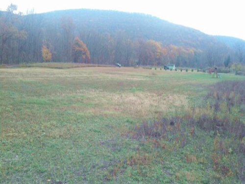 6+/- Acre Building Lot : Jersey Shore : Lycoming County : Pennsylvania