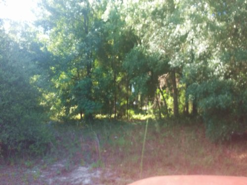 Moblile Home Lots Owner Financing : Dade City : Hernando County : Florida