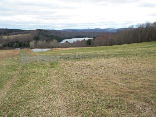 Farmland 66 Acres Ponds Views : Willet : Cortland County : New York