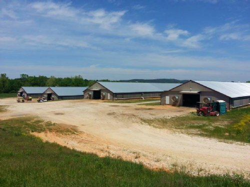 4 House Broiler Farm : Piedmont : Cherokee County : Alabama