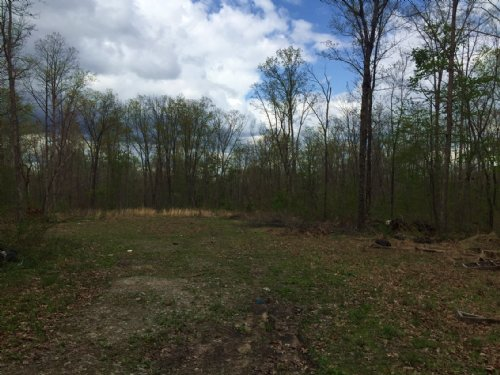 28.70+/- Acres Wooded Level Tract : Dunlap : Sequatchie County : Tennessee