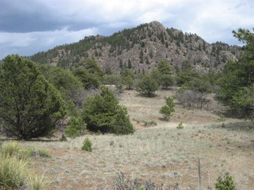 230611 Beautiful Lot In Quiet Mount : Cotopaxi : Fremont County : Colorado